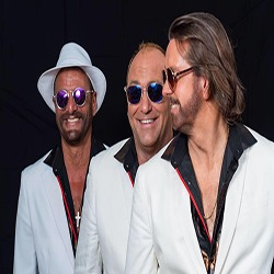 photo-picture-image-bee-gees-tribute-band-cover-band